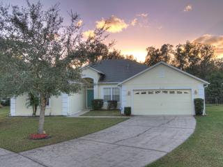 DOLPHIN HOME - Kissimmee vacation rentals