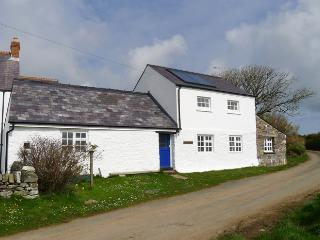 Pet Friendly Holiday Cottage - The Barn, Trelerw, St Davids - Saint Davids vacation rentals