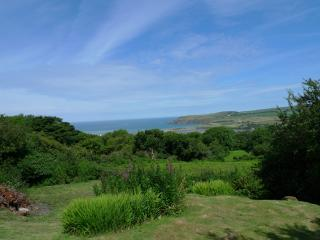 Pet Friendly Holiday Home - Nant y Rhedyn, Newport - Newport vacation rentals