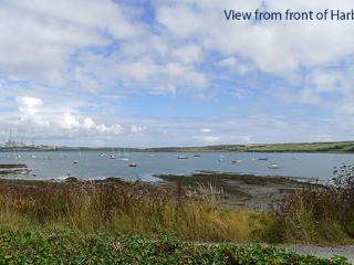 Pet Friendly Holiday Cottage - Harbour View, Angle - Angle vacation rentals
