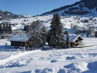 Les Silenes: New luxury 6 bed chalet apt. Gstaad - Swiss Alps vacation rentals