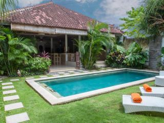Fully equip 2 bedrooms Villa in Seminyak Central - Seminyak vacation rentals