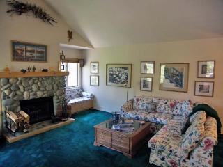 105MC - Incline Village vacation rentals