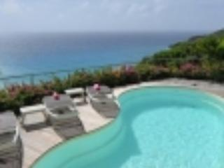 Gouverneur Cliff (1243) - Saint Barthelemy vacation rentals