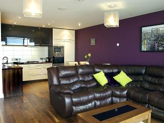 9/14 The Arc Situated in Belfast's Titanic Quarter - County Antrim vacation rentals