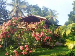 Beaches//Ocean Views/Wildlife/MonkeysGalore - Puntarenas vacation rentals
