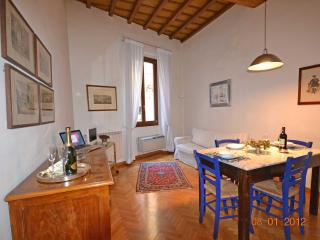 VIGNA  -  A combination of comfort and elegance - Florence vacation rentals