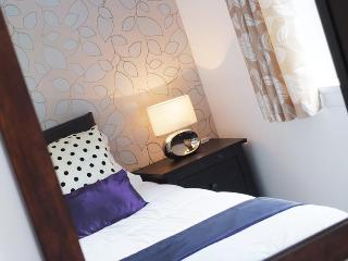 Allanfield Apartment -  free parking and WIFI - Edinburgh vacation rentals