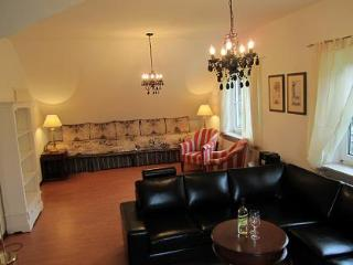 LLAG Luxury Vacation Apartment in Wolnzach - 1076 sqft, quiet, comfortable (# 2325) - Wolnzach vacation rentals
