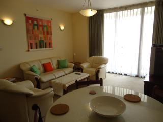 Luxury 2 bedroom apt in  Colombo 3, Sri Lanka. - Sri Lanka vacation rentals