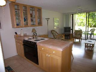 Maui Vista Garden Condo (sleep 4, beach, pools) - Kihei vacation rentals