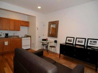 Uptown Deluxe Suite A - New York City vacation rentals