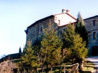 Hill top Apartment B - in the Heart of Umbria - Piegaro vacation rentals
