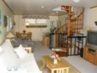 Provincetown Vacation Rental (105938) - Provincetown vacation rentals