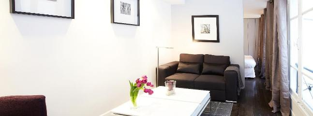LUXURY ONE BEDROOM APARTMENT IN LE MARAIS - Image 1 - 3rd Arrondissement Temple - rentals