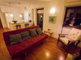 Large apartment in city center! - Munich vacation rentals