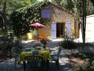La Nouvelle Peyriere - Wiided property with pool - Mazan vacation rentals