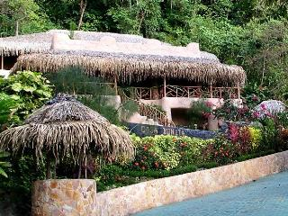 Casa Bonita-Walk to beach/Pool/Jungle/Concierge - Dominical vacation rentals