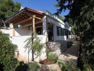 Villa With Garden With Wonderful View Of Milna - Milna vacation rentals
