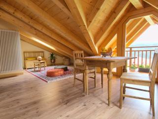 Charming, cozy and comfortable apartment-Mountains - Trentino-Alto Adige vacation rentals