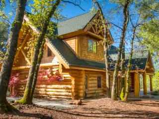 Lakehead Lake Shasta Log Lodge Vacation Home - Shasta Cascade vacation rentals