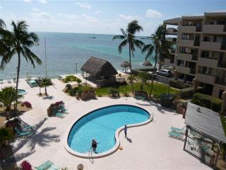 THE PALMS 408 - Islamorada vacation rentals