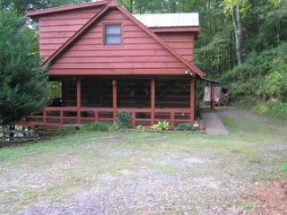 Bradley's Hassle-Free Cabin on the Toccoa River - Blue Ridge vacation rentals