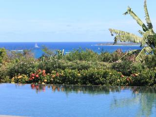 HOPE ESTATE... Gorgeous new 4 BR luxury villa overlooking Orient Bay, absolutely one of the finest in this area! - Orient Bay vacation rentals