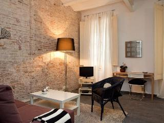 Chic Plaza Catalunya - Catalonia vacation rentals