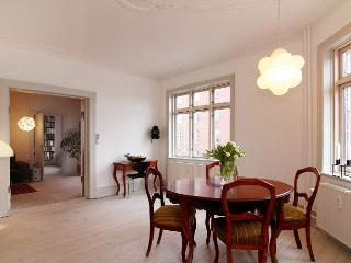Large, bright Copenhagen apartment near Vesterbro - Copenhagen vacation rentals