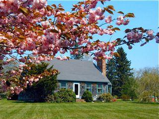 Walk to Farmer's Market and Sepiessa! (Walk-to-Farmer's-Market-and-Sepiessa!-WT108) - West Tisbury vacation rentals