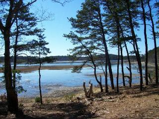 4 bedroom private overlooking inlet, Internet - Wellfleet vacation rentals