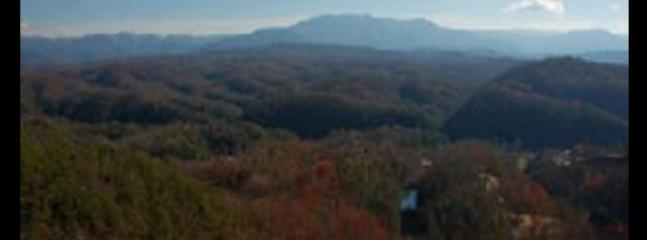 Beverly's Bearadise (2) - Sevierville vacation rentals