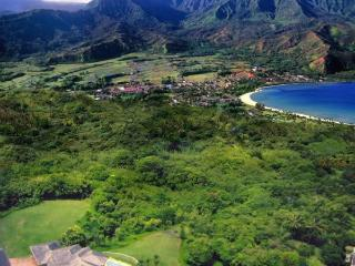 Kauai Luxury home with pool and amazing oceanviews - Princeville vacation rentals