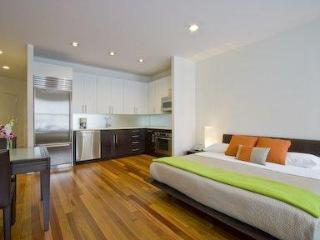 Luxury Studio in Manhattan New York - New York City vacation rentals