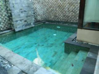 HIDDEN GARDEN VILLA #2  Safe & Secure - Legian vacation rentals