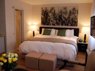 Studio apartment in heart of the city, free Wi-Fi - London vacation rentals
