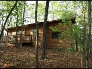 Secluded forest setting. - Birch Tree, Romantic Get-Away with Hot Tub - Ellijay - rentals