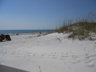Ocean Views from Condo/Larger 2 bedroom/ Decorated - Seagrove Beach vacation rentals
