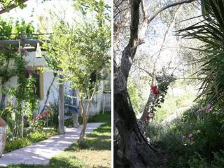 The olive yard house. w. Chloor free pool, big land - Koskinou vacation rentals