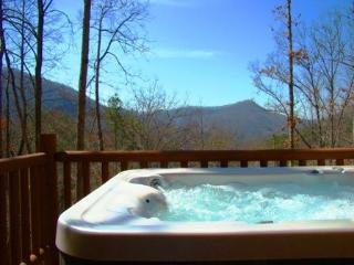 Black Bear Haven - Upscale 2 Bedroom Minutes from Town with Hot Tub, Jetted Bath Tub, Fire Pit, and Trail to Waterfall - Bryson City vacation rentals