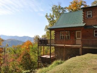 Just Like Bearadise - Superb Long Range View, Hot Tub, Wireless Internet, Nintendo Wii, and Sateliite HDTV - Bryson City vacation rentals