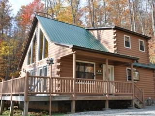 MooseHead Lodge - Exquisite Mountain View, Hot Tub, Upscale Fire Pit, Internet, and More - Bryson City vacation rentals