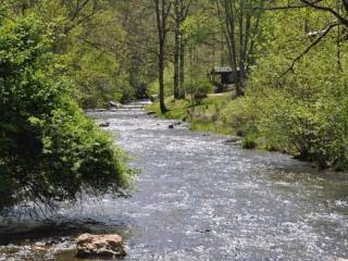 Paradise Valley Lodge - Creekside, Big Vacation Home with Fishing Onsite - Bryson City vacation rentals