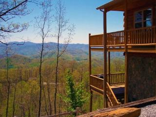 Above the Trees - Mountain Top 2 Bedroom with Pool Table, Hot Tub, Jetted Bath Tub, and Internet - Bryson City vacation rentals