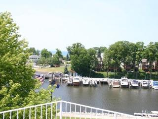 316 Indiana - Weekly stays begin on Saturdays - South Haven vacation rentals