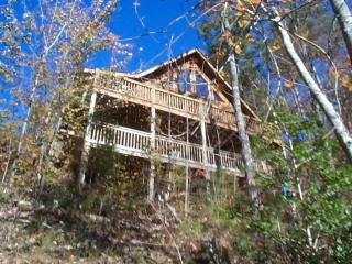 Third Night Free....Year Round Mtn Views - Blue Ridge vacation rentals