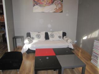 Beautiful 3 beds flat, ac, internet, central Nice - Nice vacation rentals