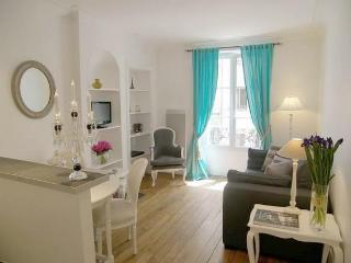 Great 2BR/2BA on Rue du Champ de Mars - apt #891 - Paris vacation rentals