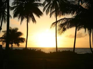 Tropical Escape 3 BR  Beach Home, Unwind, Refresh! - Humacao vacation rentals